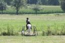 Criollos-Equitation-Hoffest-Gailingen-040812-Bodensee-Community-SEECHAT_DE-_611.JPG