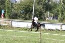Bodenseereiter-Turnier-Radolfzell-09092012-Bodensee-Community-SEECHAT_DE-IMG_9042.JPG