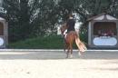 Bodenseereiter-Turnier-Radolfzell-09092012-Bodensee-Community-SEECHAT_DE-IMG_9389.JPG
