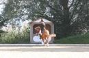Bodenseereiter-Turnier-Radolfzell-09092012-Bodensee-Community-SEECHAT_DE-IMG_9390.JPG