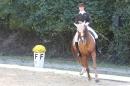 Bodenseereiter-Turnier-Radolfzell-09092012-Bodensee-Community-SEECHAT_DE-IMG_9393.JPG