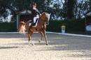 Bodenseereiter-Turnier-Radolfzell-09092012-Bodensee-Community-SEECHAT_DE-IMG_9401.JPG