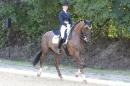 Bodenseereiter-Turnier-Radolfzell-09092012-Bodensee-Community-SEECHAT_DE-IMG_9492.JPG