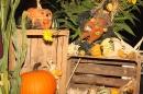 Herbstfest-PapisPumpels-Ehingen-290912-Bodensee-Community-SEECHAT_DE-IMG_1871.JPG
