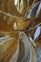 Eis-Skulpturen-Nacht-Singen-30112012-seechat-Bodensee-Community25.jpg