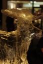 Eis-Skulpturen-Nacht-Singen-30112012-seechat-Bodensee-Community26.jpg