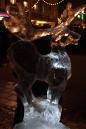 Eis-Skulpturen-Nacht-Singen-30112012-seechat-Bodensee-Community45.jpg