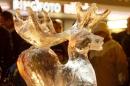 X1-Eisskulpturennacht_Singen-30112012-Bodensee-Community-SEECHAT_DE-_DSC1211.JPG