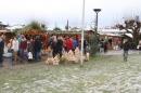 BODENS_EE-Flashmob-Gangnam-Style-Konstanz-151212-Bodensee-Community-SEECHAT_DE-IMG_6383.JPG