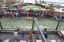 BODENS_EE-Flashmob-Gangnam-Style-Konstanz-151212-Bodensee-Community-SEECHAT_DE-IMG_6399.JPG