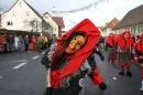 Narrentreffen-Tengen-120-Jahre-NV-Kamelia-03022013-Bodensee-Community-Seechat-de_116.JPG