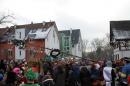 Narrenbaumumzug-Poppele-Zunft-Singen-07022013-Bodensee-Community-Seechat-de_11.JPG