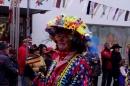 Narrenbaumumzug-Poppele-Zunft-Singen-07022013-Bodensee-Community-Seechat-de_127.JPG