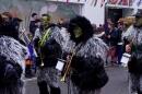 Narrenbaumumzug-Poppele-Zunft-Singen-07022013-Bodensee-Community-Seechat-de_136.JPG