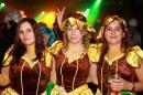 Stierball-mit-CRASH-Wahlwies-08022013-Bodensee-Community-SEECHAT_DE-IMG_4913.JPG