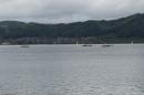 Dampfboot-Rennen-Bodman-01-06-2013-Bodensee-Community-SEECHAT_de-_11.jpg