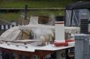 Dampfboot-Rennen-Bodman-01-06-2013-Bodensee-Community-SEECHAT_de-_118.jpg