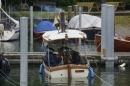 Dampfboot-Rennen-Bodman-01-06-2013-Bodensee-Community-SEECHAT_de-_119.jpg