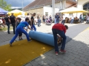 Hafenfest-Ludwigshafen-30-06-2013-Bodensee-Community-seechat_DE-P1040636.JPG