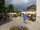 Hafenfest-Ludwigshafen-30-06-2013-Bodensee-Community-seechat_DE-P1040638.JPG