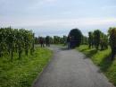 Tag-der-deutschen-Einheit-Meersburg-031013-Bodensee-Community-SEECHAT_DE-P1000004.JPG