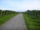 Tag-der-deutschen-Einheit-Meersburg-031013-Bodensee-Community-SEECHAT_DE-P1000013.JPG