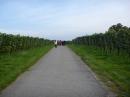 Tag-der-deutschen-Einheit-Meersburg-031013-Bodensee-Community-SEECHAT_DE-P1000017.JPG