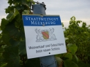 Tag-der-deutschen-Einheit-Meersburg-031013-Bodensee-Community-SEECHAT_DE-P1000053.JPG