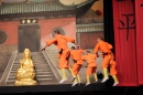 Shaolin-Kampfkunst-Singen-210114-Bodensee-Community-seechat_de-IMG_5191.JPG