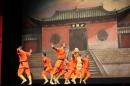 Shaolin-Kampfkunst-Singen-210114-Bodensee-Community-seechat_de-IMG_5196.JPG