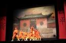 Shaolin-Kampfkunst-Singen-210114-Bodensee-Community-seechat_de-IMG_5209.JPG