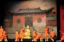 Shaolin-Kampfkunst-Singen-210114-Bodensee-Community-seechat_de-IMG_5221.JPG