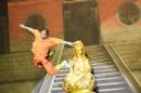 Shaolin-Kampfkunst-Singen-210114-Bodensee-Community-seechat_de-IMG_5238.JPG