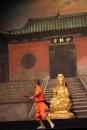 Shaolin-Kampfkunst-Singen-210114-Bodensee-Community-seechat_de-IMG_5391.JPG