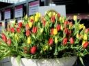 KARLSRUHE-art-140312-12-03-2014-Bodenseecommunity-seechat_de-DSCF4410.JPG