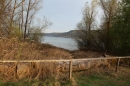 Naturschutzgebiet-Bodman-Ludwigshafen-7-4-14-Bodensee-Community-SEECHAT_DE-IMG_2157.JPG