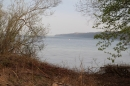 Naturschutzgebiet-Bodman-Ludwigshafen-7-4-14-Bodensee-Community-SEECHAT_DE-IMG_2158.JPG