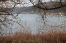 Naturschutzgebiet-Bodman-Ludwigshafen-7-4-14-Bodensee-Community-SEECHAT_DE-IMG_2162.JPG