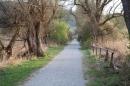 Naturschutzgebiet-Bodman-Ludwigshafen-7-4-14-Bodensee-Community-SEECHAT_DE-IMG_2181.JPG
