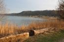 Naturschutzgebiet-Bodman-Ludwigshafen-7-4-14-Bodensee-Community-SEECHAT_DE-IMG_2182.JPG