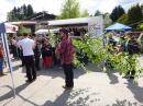 Floriansfest-Mai-Wanderung-Sipplingen-01-05-2014-Bodensee-Community-SEECHAT_DE-P1010258.JPG