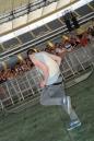 World_Club_Dome_BigCityBeats_Frankfurt_31-05-2014-Community-SEECHAT_de-DSC_4793.JPG