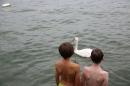Badewannenrennen-DLRG-Bodman-10-08-2014-Bodensee-Community_SEECHAT_DE-IMG_5330.JPG