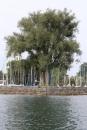 Bodenseequerung-Jacque-250814-Bodensee-Community_SEECHAT_DE-IMG_6146.JPG
