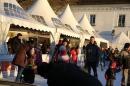 Ueberlingen-On-Ice-05-01-2015-Bodensee-Community-SEECHAT_DE-IMG_6502.JPG