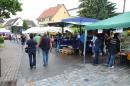 Hafenfest-Ludwigshafen-270615-Bodensee-Community-SEECHAT_DE-IMG_7075.JPG