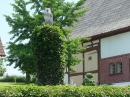KANZACH-Flohmarkt-04072015-Bodensee-Community-SEECHAT_DE-_14.JPG