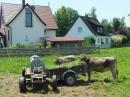 KANZACH-Flohmarkt-04072015-Bodensee-Community-SEECHAT_DE-_28.JPG