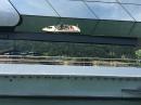 BODENSEEBOOT-Lindau-Bregenz-20160527-Bodensee-Community-SEECHAT_DE-IMG_4086.JPG
