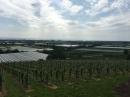 BODENSEEBOOT-Lindau-Bregenz-20160527-Bodensee-Community-SEECHAT_DE-IMG_4132.JPG